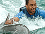 Dolphin Cove Experience � Encounter Program